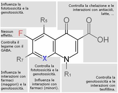 fluorochinolone - photo #4